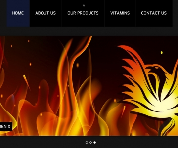 Golden Phoenix Website
