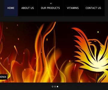 Golden Phoenix Website